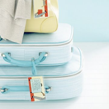 luggage_martha stewart